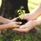 Provincie stelt ton beschikbaar om dorp of stad groen en klimaatslim te maken