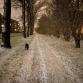 De regio is bedekt met een laagje sneeuw, maar niet voor lang
