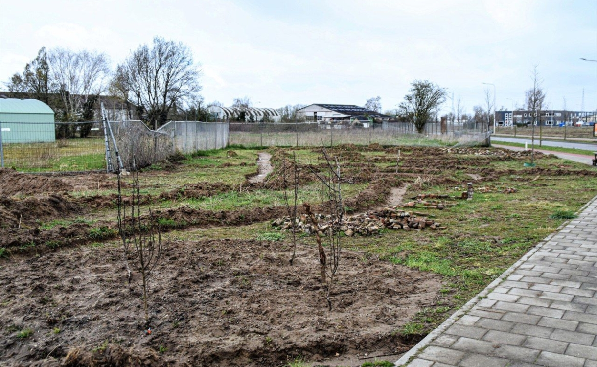 Idealist moet deeltuin op Zutphens industrieterrein weghalen