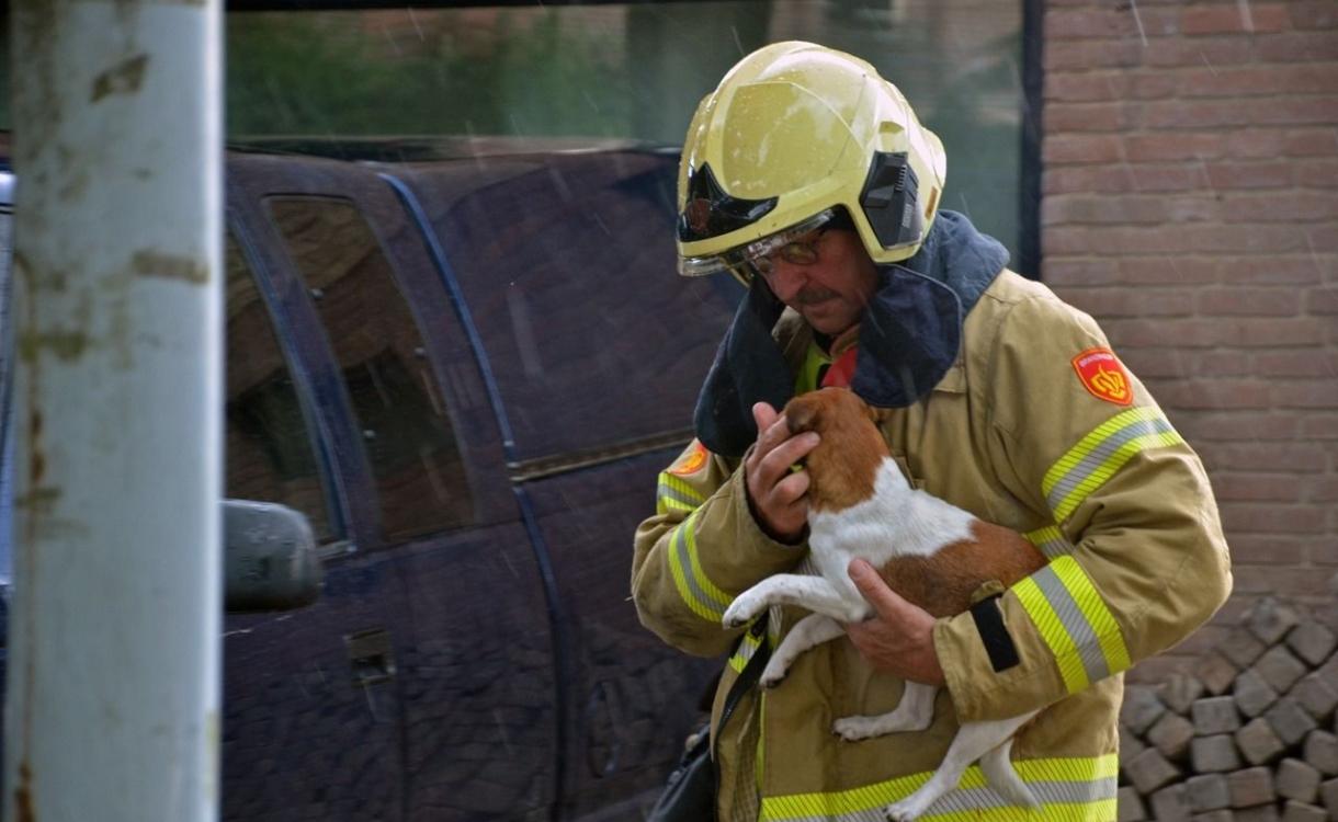Brandweer red honden, katten en hamster bij garagebrand