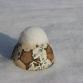 Geen enkele voetbalclub gaat voetballen door de sneeuw