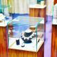 Zutphense Juwelier geeft uitzonderlijke kortingen vanwege sluiting