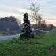 Witte Lint-kerstboom weggehaald vanwege verkeersveiligheid