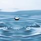 LGLD KORT: Speel water naar de schooltuin van de Rietgors