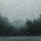 Bereid je tuin alvast voor, zondag trekt storm Ciara over de regio