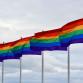 Provincie: 'Acceptatie en veiligheid Gelderse LHBTI's moet beter'