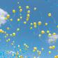 Zutphen verbiedt oplaten van ballonnen