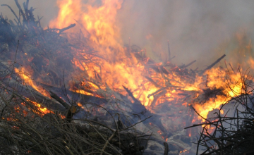 Alle paasvuren in de gemeente Lochem afgelast door droogte