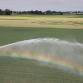 Water halen uit beken, sloten en vijvers verboden vanwege droogte