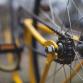 Warnsvelder (85) wil wereldrecord pakken op zijn fiets
