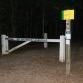 Gemeente Zutphen wil bullmastiff die teckel Takkie doodbeet muilkorven