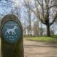 Burgerbelang na fataal bijtincident: 'lijn je hond aan als iemand dat vraagt'