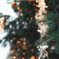 Warnsvelders zamelen geld in voor kerstboom na gemeentelijke bezuiniging