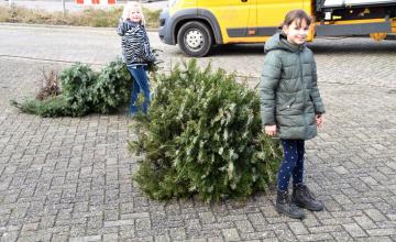 Kerstbomen inzamelen dit jaar populairder dan ooit: 'Kinderen hebben de tijd'