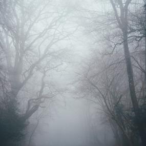 Code geel door dichte mist