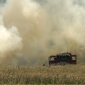 Aantal natuurbranden dit jaar verdriedubbeld