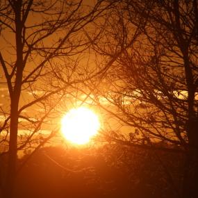 Laaghangende zon zorgde voor golf aan ongelukken