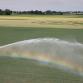 Droogte neemt toe: oppervlaktewater sproeien mag niet meer in delen van de regio