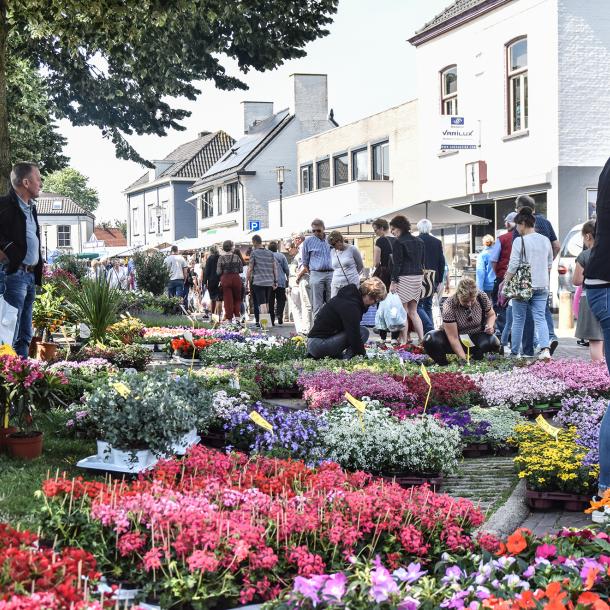Brummense Pinkstermarkt compacter, maar nog steeds populair