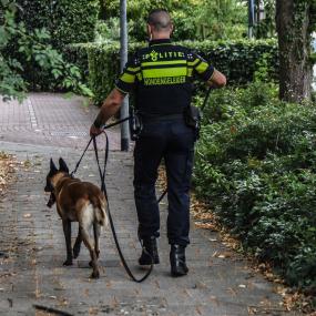 Politie houdt grote zoekactie in Zutphense wijk