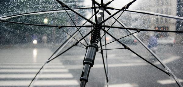 Pak je paraplu maar uit de kast: de herfst gaat beginnen