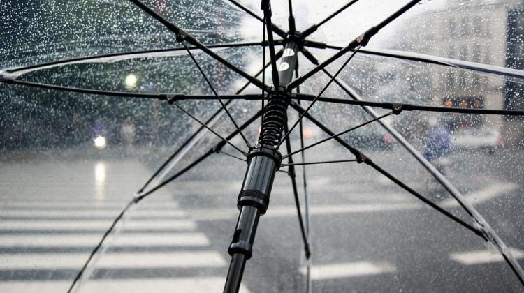 Pak Je Paraplu Maar Uit De Kast De Herfst Gaat Beginnen