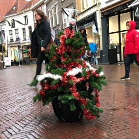 Bezuinigingen of niet: de eerste kerstboom staat in het centrum van Zutphen