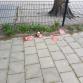'Anderhalve meter'-stickers bij basisschool vernield